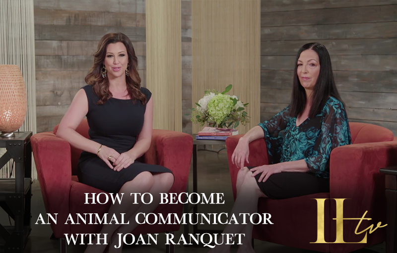 How to Become an Animal Communicator with Joan Ranquet